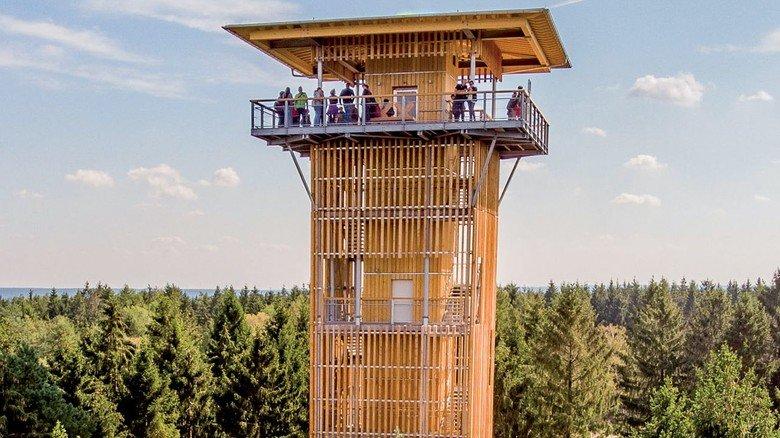 Höher als die Bäume: Zum Baumwipfelpfad gehört ein 45 Meter hoher Aussichtsturm, dessen Plattform über eine Treppe oder auch mit dem Fahrstuhl zu erreichen ist.