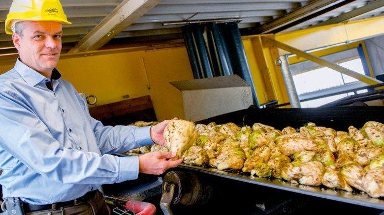 Sauber: Werkleiter Stefan Mondel zeigt eine gewaschene Knolle. Foto: Straßmeier