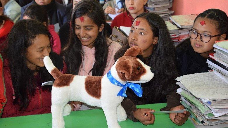Basis für die Arbeit des Teams um Tierarzt Grünefelder ist die Aufklärung in Schulen.