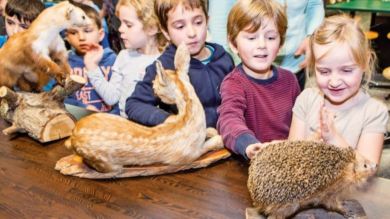 Naturvielfalt erleben: Das Museum ist besonders bei Kindern beliebt. Foto: RRZ/MCC, Mentz