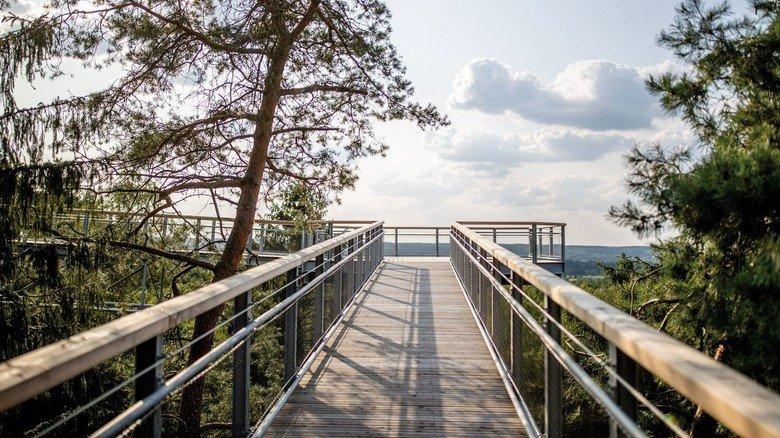 20 Meter über der Erde: Der 700 Meter lange Pfad führt durch die Wipfel des Wildparks Lüneburger Heide.