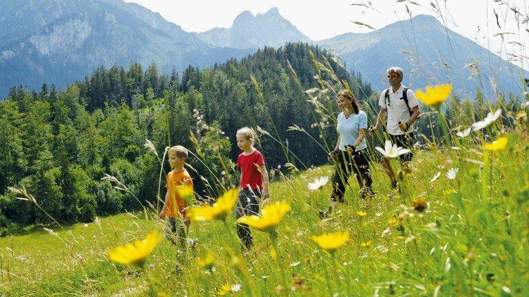 Naturerlebnis: Eine schöne und unberührte Landschaft, wie hier im Allgäu, macht Bayern oft zum Reiseziel.