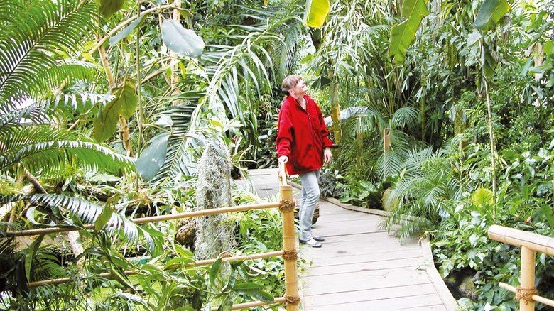 Älteste bayerische Forschungsstätte: Botanischer Garten in Würzburg. Foto: Vogg