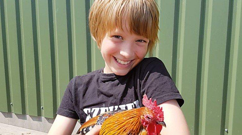 Zum Anfassen: Auf dem Tages-Erlebnisbauernhof Strüven gibt es nicht nur Hühner, sondern auch Kühe und Hunde sowie Enten, Ziegen, Schafe, Schweine und Kaninchen. Foto: Erlebnisbauernhof Strüven