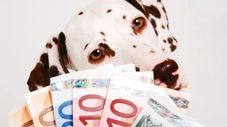So süß sie auch sind: Haustiere können ganz schön ins Geld gehen. Foto: Fotolia