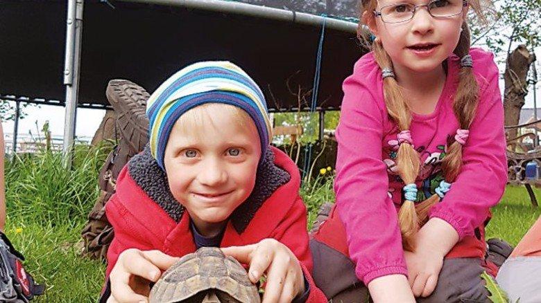 Ungewöhnlich: Auf dem Erlebnisbauernhof Strüven gibt es sogar eine Schildkröte. Foto: Erlebnisbauernhof Strüven