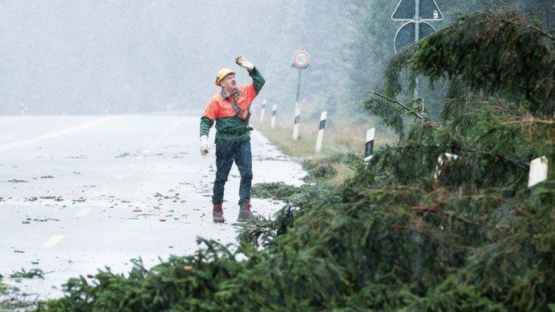 Sturm Herwart hat gewütet: Aufräumarbeiten an der Bundesstraße 4 im Harz. Foto: dpa