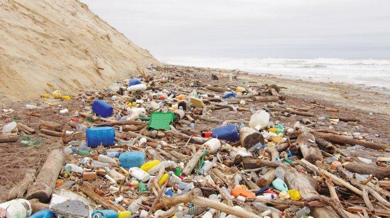 Umwelt-Problem: Plastikmüll in Meeren und an Stränden. Foto: Adobe Stock