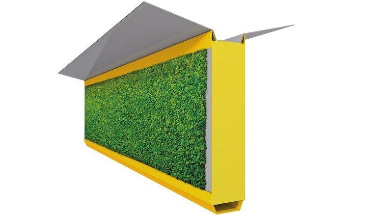 Moos-Paneel: Die Pflanzen wachsen auf textilem Grund und filtern Feinstaub.
