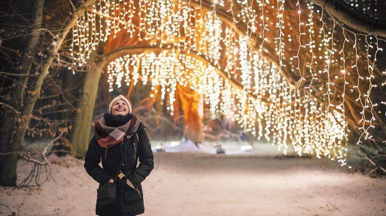 """Lichterglanz: """"Christmas Garden"""" in der Stuttgarter Wilhelma. Foto: Christmas Garden Deutschland"""