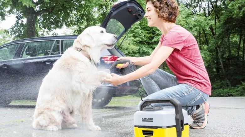 Speziell für Hunde: Ein neues Reinigungsgerät. Foto: Werk