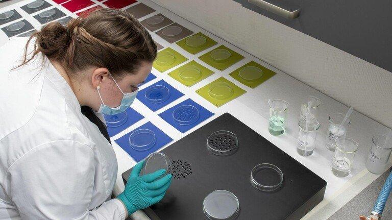 Viele Proben in einem Test: Textillaborantin Bianca Hüttemann bei der Arbeit.