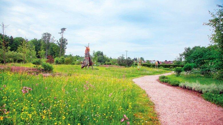 Umwelt im Fokus: Blick in den Garten des Naturkosmetikherstellers.  Foto: Börlind