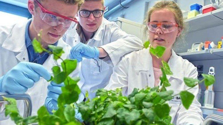 Im Agrarzentrum: Raphael Schilling, David Geray und Maria Koch … Foto: Sandro