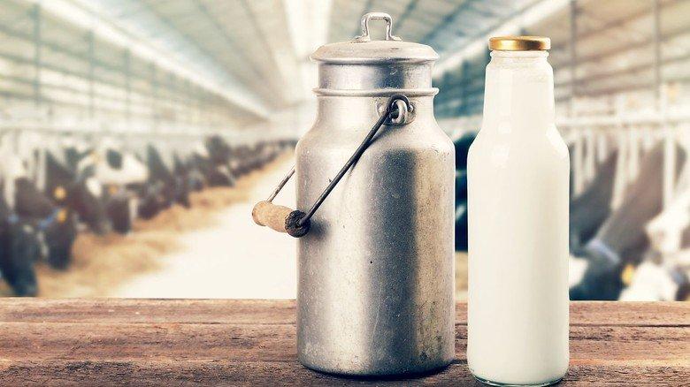 Frische Milch: Um das gesunde Getränk dreht sich ein Themenweg.