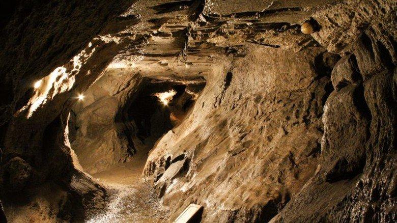 Bizarre Steinformation: In der Segeberger Kalkberghöhle überwintern jedes Jahr 22000 Fledermäuse. Foto: Veranstalter