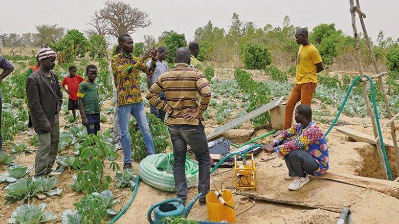 Im Feldversuch: Kleinbauern in Afrika bei der Bewässerung ihrer Pflanzen. Foto: Werk