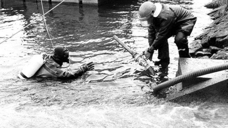 1986: Ein Unfall beim Chemiekonzern Sandoz führt zum Fischsterben im Rhein. Foto: Ullstein