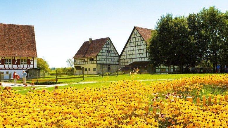 Bietet mehr als nur ländliches Idyll: Das Museumsdorf Kürnbach in Bad Schussenried. Foto: Landratsamt Biberach