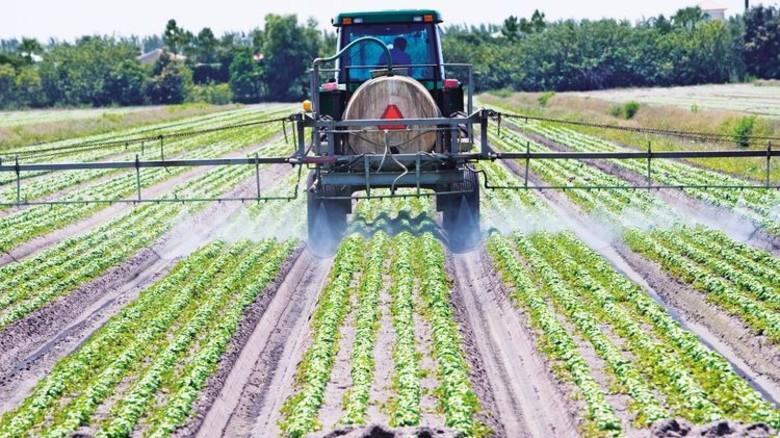 Bauernalltag: Lebensmittel günstig auf großen Flächen anzubauen, ist ohne Unkrautbekämpfungsmittel unmöglich. Foto: getty