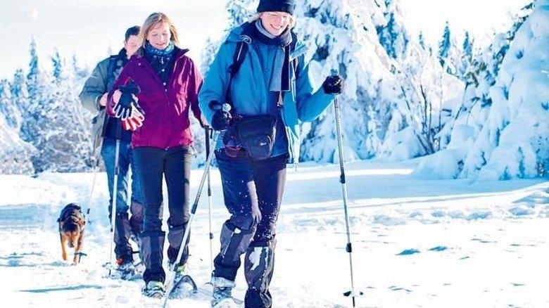 Unberührte Natur für Winterwanderer: Mittelgebirgsregion Rhön. Foto: Schmitt