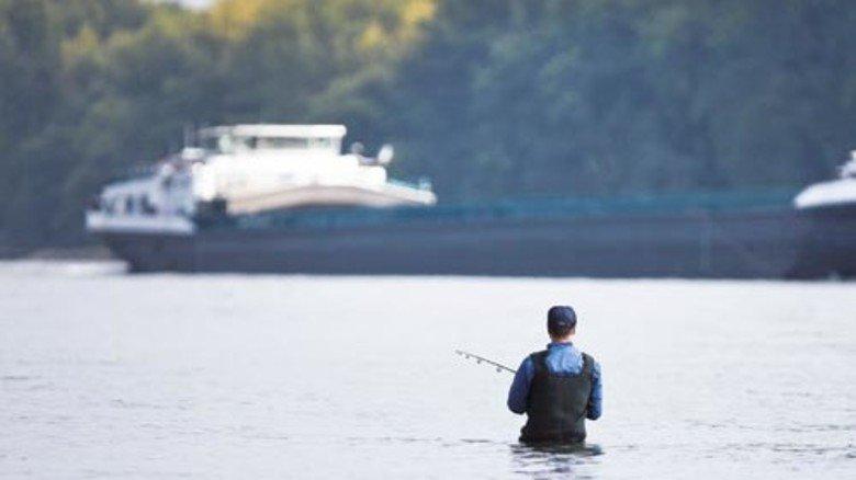 2014: Im Rhein, jahrzehntelang stark belastet, leben wieder 43 Fischarten. Foto: dpa