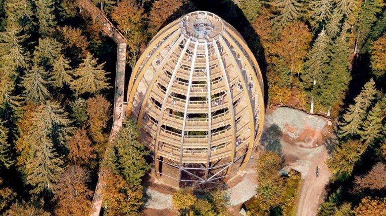 Auf den Gipfel: Der Turm des Baumwipfelpfads Neuschönau. Foto: Struck