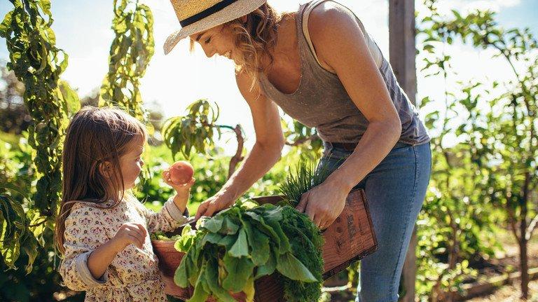 Gärtnern mit Kind und Kraut: Es gibt viele Möglichkeiten, damit naturverbundene Städter ihren grünen Daumen ausprobieren können.