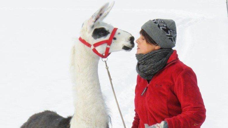 Sanfte Begleiter: Mit Lamas durch die Rhön. Foto: Orenda-Ranch.com
