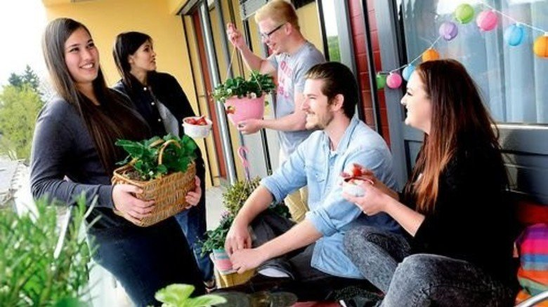 Selbst gepflanzt: Ernten und gemeinsam naschen geht auch gut in der Stadt. Foto: Brancheninitiative Grünes Medienhaus