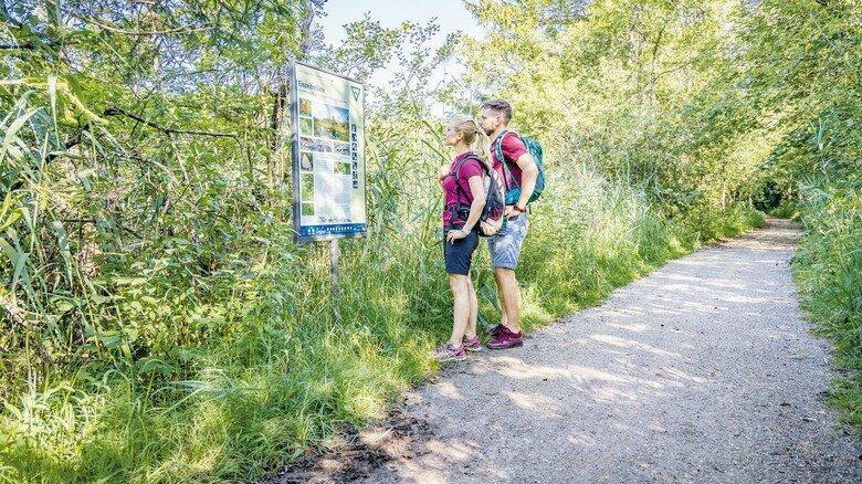 Zahlreiche Startwege: Rund um den Chiemsee erstreckt sich ein weitläufiges Netz von Wanderpfaden durch Moorgebiete.