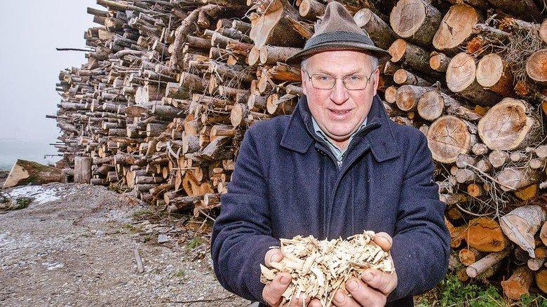 Heizwert: Ein Teil von Killers Holzernte wird als Brennstoff verkauft. Foto: Bodmer