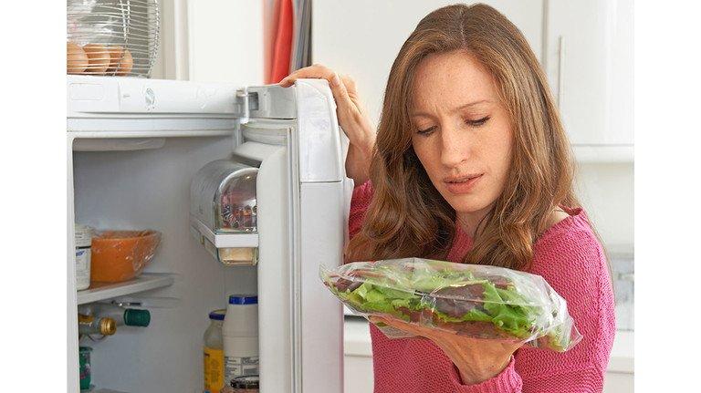 Leider nicht lange haltbar: Salat verdirbt recht schnell – ob nun als Kopf oder geputzt aus der Tüte.