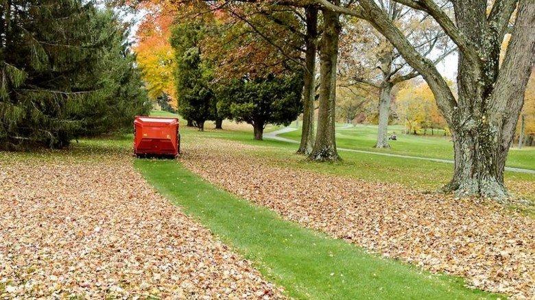 Parkpflege: Hier gibt's jetzt richtig viel zu tun. Foto: Werk