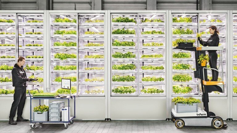 Moderne Technik: Mitarbeiter kontrollieren das Wachstum der Pflanzen.