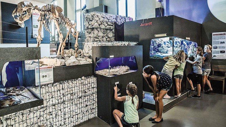 Informativ: Das interaktive Erlebnismuseum bei der Charlottenhöhle.