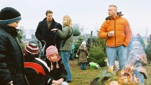 Tannenbaum Selber Schlagen Bremen.Weihnachtsbäume Selbst Schlagen