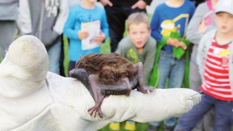 Aus der Nähe: Kinder bestaunen Fledermäuse in der Wilhelma. Foto: Veranstalter