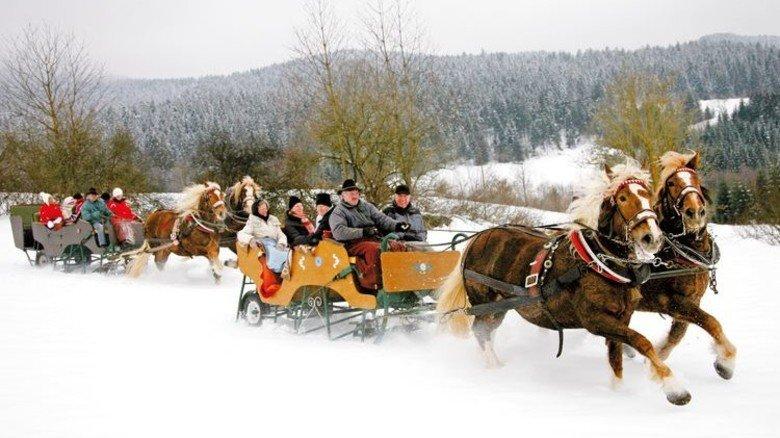 Romantische Tour: Im Pferdeschlitten in der Oberpfalz. Foto: Obermeier
