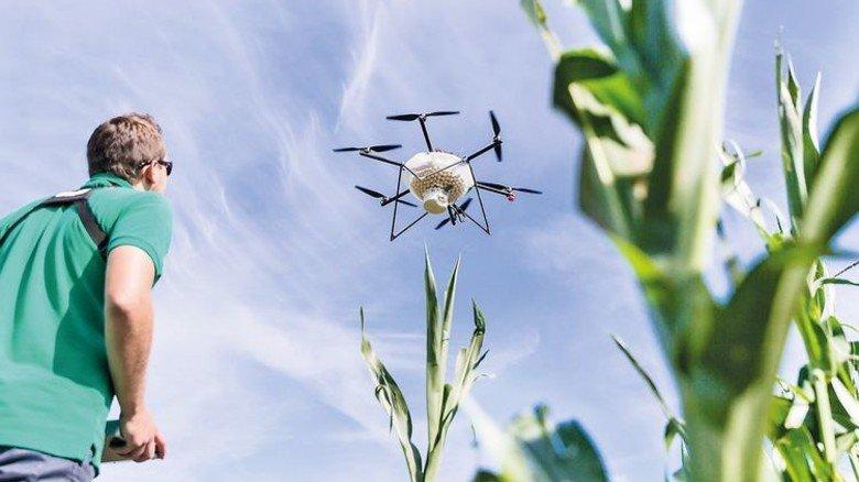 Flugobjekt: Die Drohne bringt den Dünger an die gewünschte Stelle im Feld. Foto: baywa