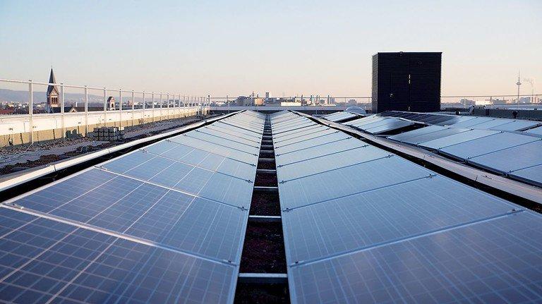 Über den Dächern von Mannheim: Blick auf eine der Photovoltaik-Anlagen des Roche-Standorts.