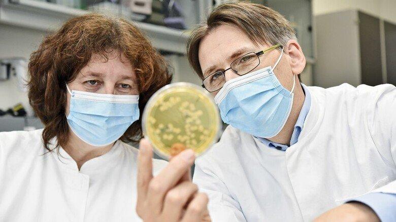 Keim-Kolonne: Theresia Stehle und Georg Wein begutachten eine Probe, auf der sie bestimmte Keime zu Vergleichszwecken züchten.
