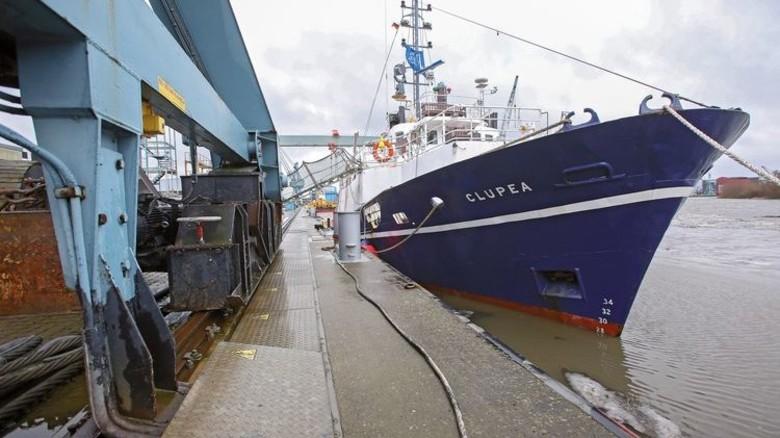 Umbau: Das Schiff in der Pella Sietas Werft im Süden des Hamburger Hafens. Foto: dpa