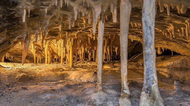 In der Hermannshöhle herrscht eine besondere Stimmung. Der Grottenolm ist hier zu Hause. Foto: Meusel