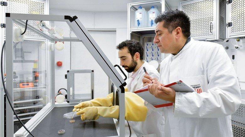 Test bestanden: Der Astrobiologe Cyprien Verseux (links) und der Materialwissenschaftler Martin Castillo haben mit zwei weiteren Fachleuten in dem Labormodul gearbeitet.