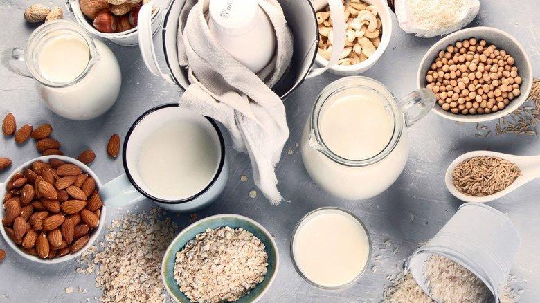 Variantenreich: Pflanzenmilch kann aus vielen untrschiedlichen Lebensmitteln hergestellt werden.