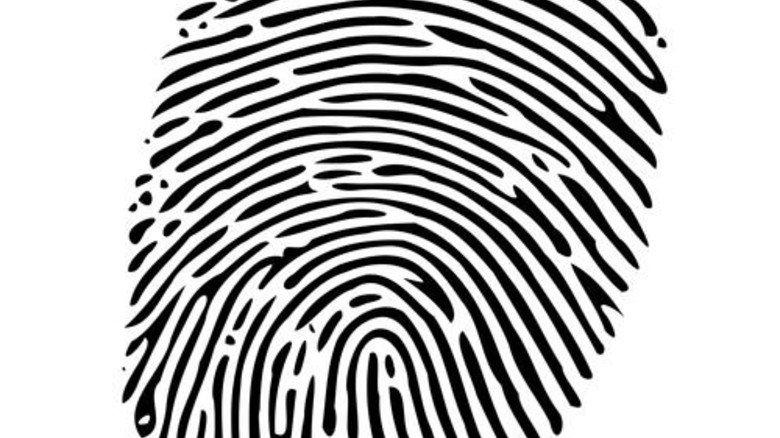 Einzigartig: Rund 7,4 Milliarden Menschen leben auf der Erde, und jeder hat seinen eigenen Fingerabdruck. Foto: Wilfredor