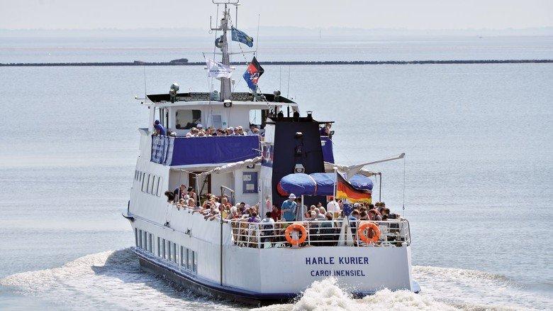 Einige Veranstalter bieten auch Boot-Touren zu den Schweinswalen an.