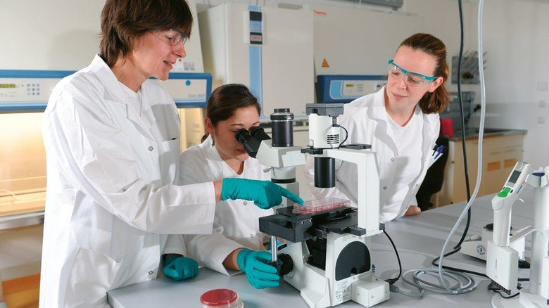 Laborbedingungen: Boehringer Ingelheim erforscht und produziert an mehreren Standorten in Deutschland und anderen europäischen Ländern Wirkstoffe und Technologien für die Tiergesundheit.