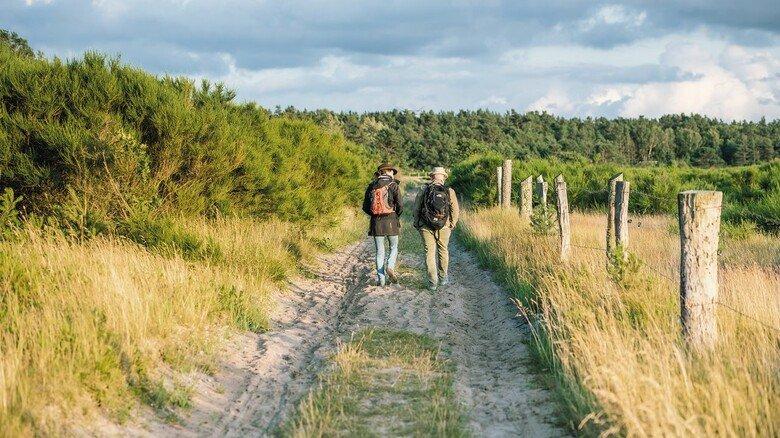 Auf Rügen: Im Südosten der Insel sind zahlreiche Naturpfade zu finden.